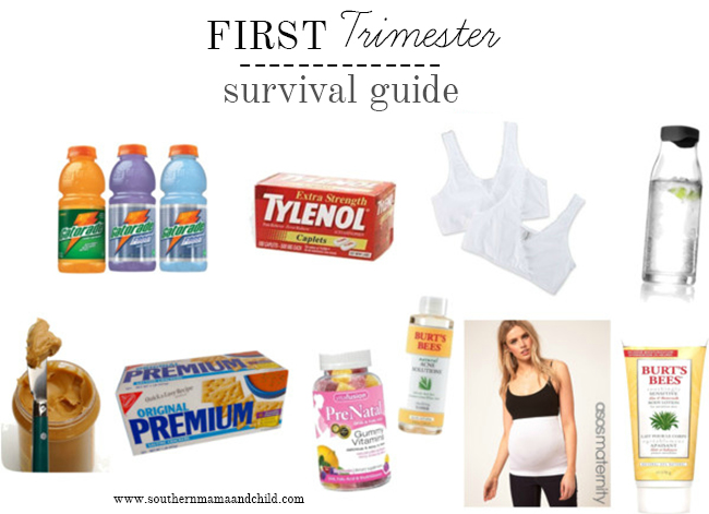 1st Trimester Survival Guide
